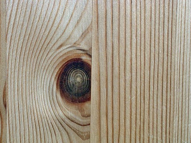 struktura dřeva